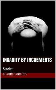 InsanityByIncrements
